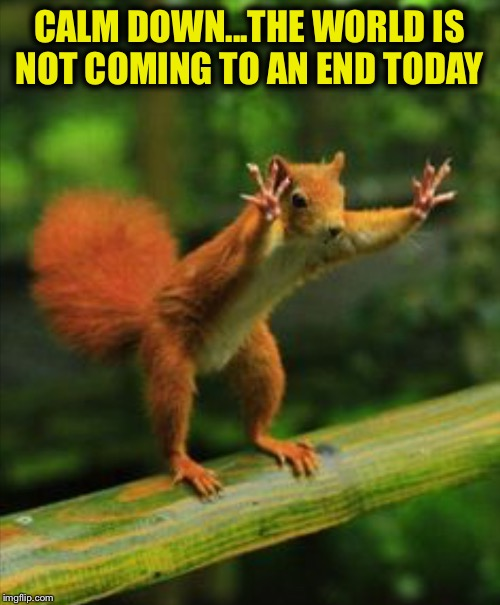 Google September 23rd in case you haven't heard.... | CALM DOWN...THE WORLD IS NOT COMING TO AN END TODAY | image tagged in red squirrel | made w/ Imgflip meme maker