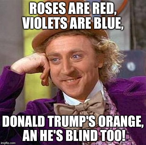 Creepy Condescending Wonka Meme | ROSES ARE RED, VIOLETS ARE BLUE, DONALD TRUMP'S ORANGE, AN HE'S BLIND TOO! | image tagged in memes,creepy condescending wonka | made w/ Imgflip meme maker