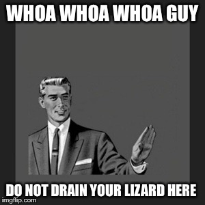 WHOA WHOA WHOA GUY DO NOT DRAIN YOUR LIZARD HERE | made w/ Imgflip meme maker