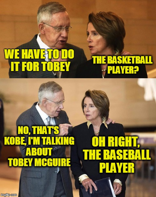 Harry and Nancy | WE HAVE TO DO IT FOR TOBEY THE BASKETBALL PLAYER? NO, THAT'S KOBE, I'M TALKING ABOUT TOBEY MCGUIRE OH RIGHT, THE BASEBALL PLAYER | image tagged in harry and nancy | made w/ Imgflip meme maker