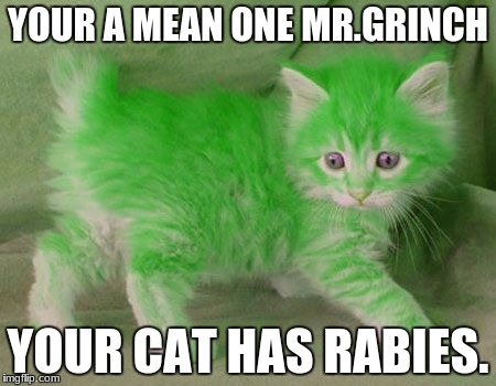 YOUR A MEAN ONE MR.GRINCH YOUR CAT HAS RABIES. | image tagged in dank memes | made w/ Imgflip meme maker