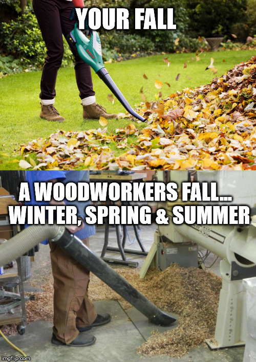 Woodworkers fall | YOUR FALL A WOODWORKERS FALL...  WINTER, SPRING & SUMMER | image tagged in fall,wood | made w/ Imgflip meme maker