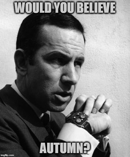 Maxwell Smart | WOULD YOU BELIEVE AUTUMN? | image tagged in maxwell smart | made w/ Imgflip meme maker