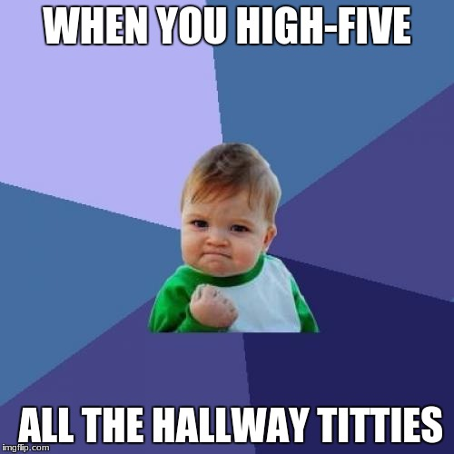 Success Kid Meme | WHEN YOU HIGH-FIVE ALL THE HALLWAY TITTIES | image tagged in memes,success kid | made w/ Imgflip meme maker
