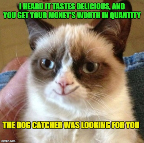 THE DOG CATCHER WAS LOOKING FOR YOU I HEARD IT TASTES DELICIOUS, AND YOU GET YOUR MONEY'S WORTH IN QUANTITY | made w/ Imgflip meme maker