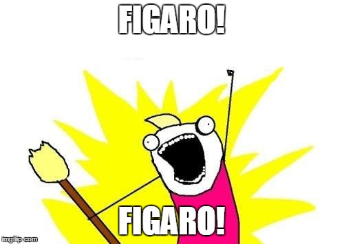 X All The Y Meme | FIGARO! FIGARO! | image tagged in memes,x all the y | made w/ Imgflip meme maker