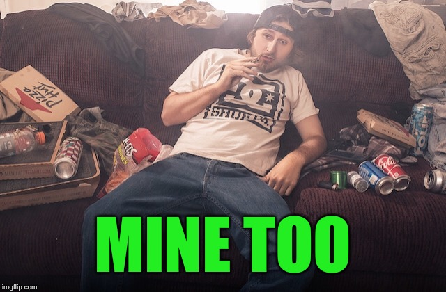 Stoner on couch | MINE TOO | image tagged in stoner on couch | made w/ Imgflip meme maker