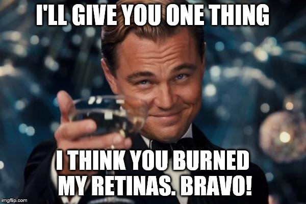 Leonardo Dicaprio Cheers Meme | I'LL GIVE YOU ONE THING I THINK YOU BURNED MY RETINAS. BRAVO! | image tagged in memes,leonardo dicaprio cheers | made w/ Imgflip meme maker