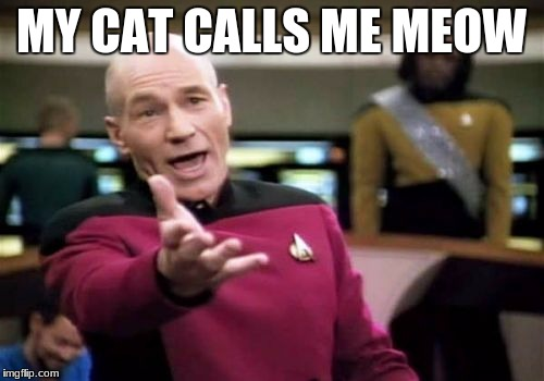 Picard Wtf Meme | MY CAT CALLS ME MEOW | image tagged in memes,picard wtf | made w/ Imgflip meme maker