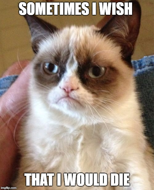 Grumpy Cat Meme | SOMETIMES I WISH THAT I WOULD DIE | image tagged in memes,grumpy cat | made w/ Imgflip meme maker