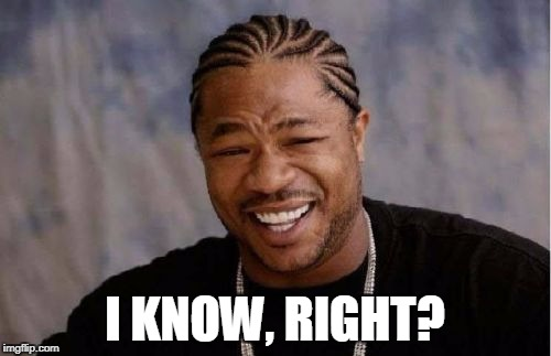 Yo Dawg Heard You Meme | I KNOW, RIGHT? | image tagged in memes,yo dawg heard you | made w/ Imgflip meme maker