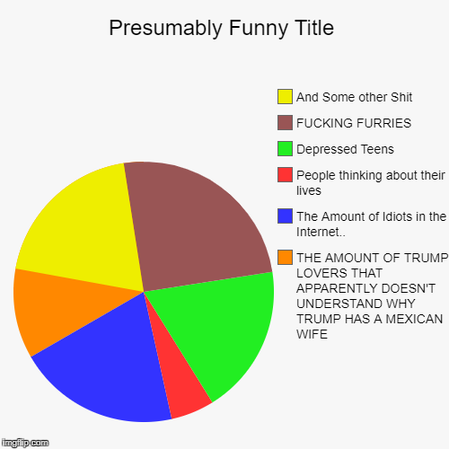 My Fucking Thoughts Right Now | THE AMOUNT OF TRUMP LOVERS THAT APPARENTLY DOESN'T UNDERSTAND WHY TRUMP HAS A MEXICAN WIFE, The Amount of Idiots in the Internet.., People t | image tagged in funny,pie charts | made w/ Imgflip pie chart maker