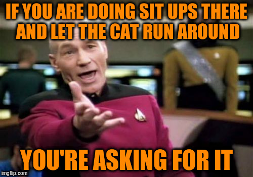 Picard Wtf Meme | IF YOU ARE DOING SIT UPS THERE AND LET THE CAT RUN AROUND YOU'RE ASKING FOR IT | image tagged in memes,picard wtf | made w/ Imgflip meme maker