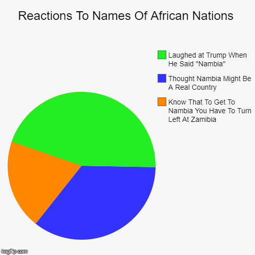 Reactions To Names Of African Nations | Know That To Get To Nambia You Have To Turn Left At Zamibia, Thought Nambia Might Be A Real Country, | image tagged in funny,pie charts | made w/ Imgflip chart maker