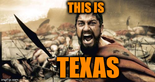 Sparta Leonidas Meme | THIS IS TEXAS | image tagged in memes,sparta leonidas | made w/ Imgflip meme maker