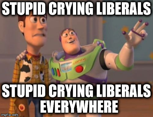 X, X Everywhere Meme | STUPID CRYING LIBERALS STUPID CRYING LIBERALS  EVERYWHERE | image tagged in memes,x x everywhere | made w/ Imgflip meme maker
