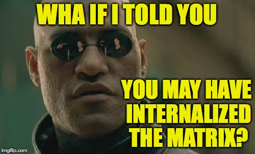 Matrix Morpheus Meme | WHA IF I TOLD YOU YOU MAY HAVE INTERNALIZED THE MATRIX? | image tagged in memes,matrix morpheus | made w/ Imgflip meme maker