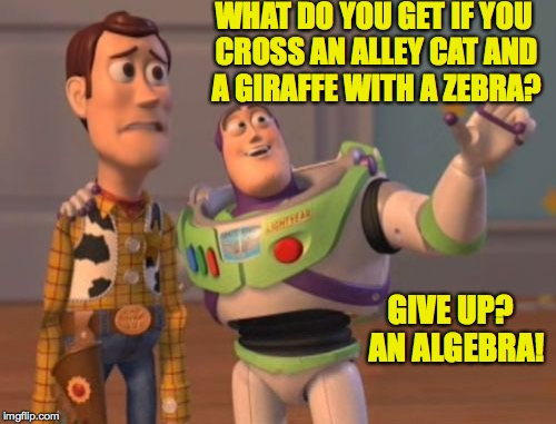X, X Everywhere Meme | WHAT DO YOU GET IF YOU CROSS AN ALLEY CAT AND A GIRAFFE WITH A ZEBRA? GIVE UP?  AN ALGEBRA! | image tagged in memes,x,x everywhere,x x everywhere | made w/ Imgflip meme maker