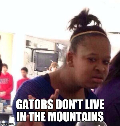 Black Girl Wat Meme | GATORS DON'T LIVE IN THE MOUNTAINS | image tagged in memes,black girl wat | made w/ Imgflip meme maker