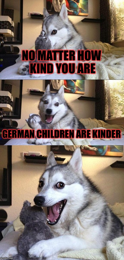 Bad Pun Dog |  NO MATTER HOW KIND YOU ARE; GERMAN CHILDREN ARE KINDER | image tagged in memes,bad pun dog,german,children | made w/ Imgflip meme maker