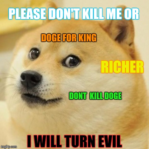 Doge for king | PLEASE DON'T KILL ME OR I WILL TURN EVIL DONT  KILL DOGE DOGE FOR KING RICHER | image tagged in memes,doge | made w/ Imgflip meme maker