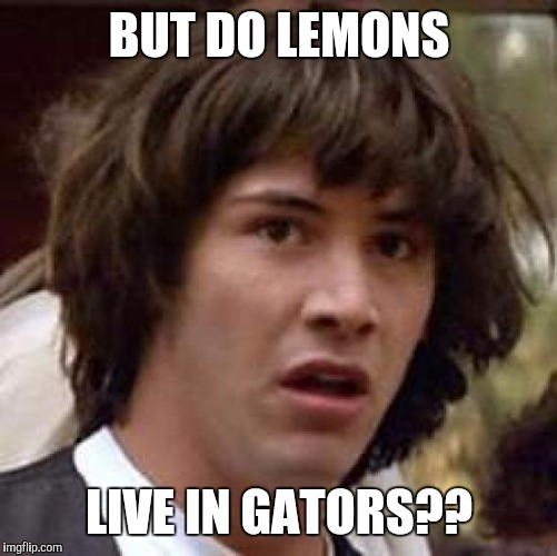 Conspiracy Keanu Meme | BUT DO LEMONS LIVE IN GATORS?? | image tagged in memes,conspiracy keanu | made w/ Imgflip meme maker