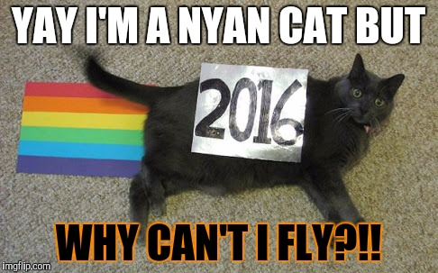 YAY I'M A NYAN CAT BUT WHY CAN'T I FLY?!! | image tagged in nyan cat | made w/ Imgflip meme maker