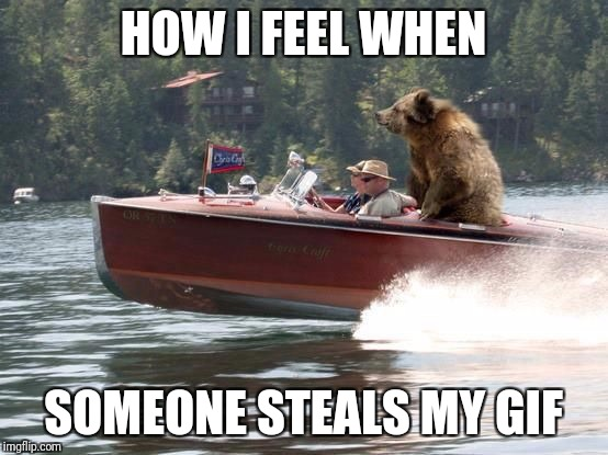 Bear on a boat | HOW I FEEL WHEN SOMEONE STEALS MY GIF | image tagged in bear on a boat | made w/ Imgflip meme maker