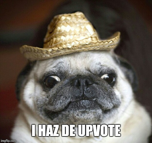 pug life | I HAZ DE UPVOTE | image tagged in pug life | made w/ Imgflip meme maker