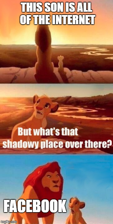 Simba Shadowy Place Meme | THIS SON IS ALL OF THE INTERNET FACEBOOK | image tagged in memes,simba shadowy place | made w/ Imgflip meme maker