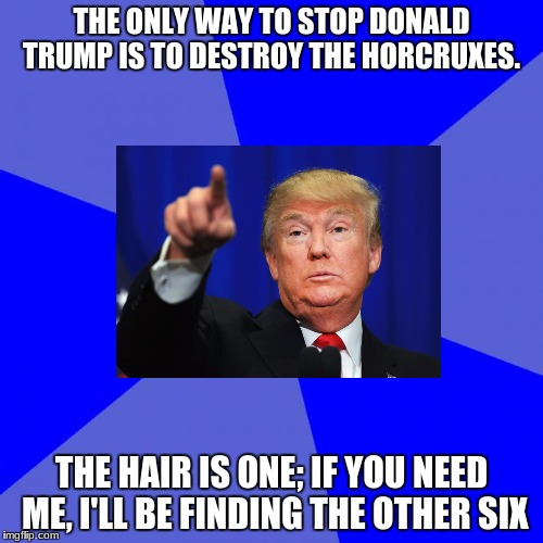Blank Blue Background | THE ONLY WAY TO STOP DONALD TRUMP IS TO DESTROY THE HORCRUXES. THE HAIR IS ONE; IF YOU NEED ME, I'LL BE FINDING THE OTHER SIX | image tagged in memes,blank blue background | made w/ Imgflip meme maker