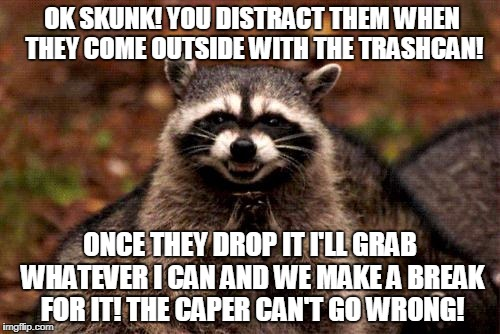 The Garbage Caper! | OK SKUNK! YOU DISTRACT THEM WHEN THEY COME OUTSIDE WITH THE TRASHCAN! ONCE THEY DROP IT I'LL GRAB WHATEVER I CAN AND WE MAKE A BREAK FOR IT! | image tagged in memes,evil plotting raccoon | made w/ Imgflip meme maker