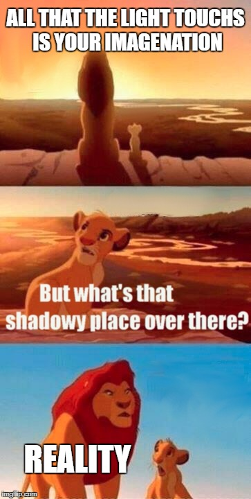 Simba Shadowy Place Meme | ALL THAT THE LIGHT TOUCHS IS YOUR IMAGENATION REALITY | image tagged in memes,simba shadowy place | made w/ Imgflip meme maker