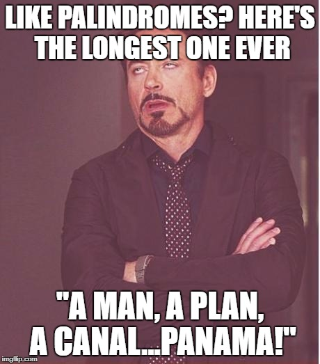 "Face You Make Robert Downey Jr Meme | LIKE PALINDROMES? HERE'S THE LONGEST ONE EVER ""A MAN, A PLAN, A CANAL...PANAMA!"" 
