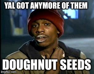 Y'all Got Any More Of That Meme | YAL GOT ANYMORE OF THEM DOUGHNUT SEEDS | image tagged in memes,yall got any more of | made w/ Imgflip meme maker
