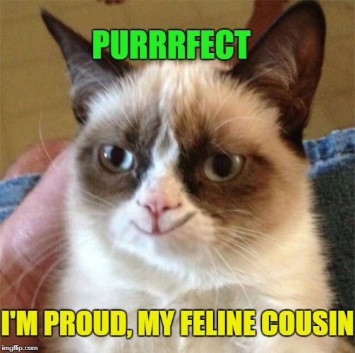 PURRRFECT I'M PROUD, MY FELINE COUSIN | made w/ Imgflip meme maker