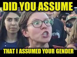 DID YOU ASSUME THAT I ASSUMED YOUR GENDER | made w/ Imgflip meme maker