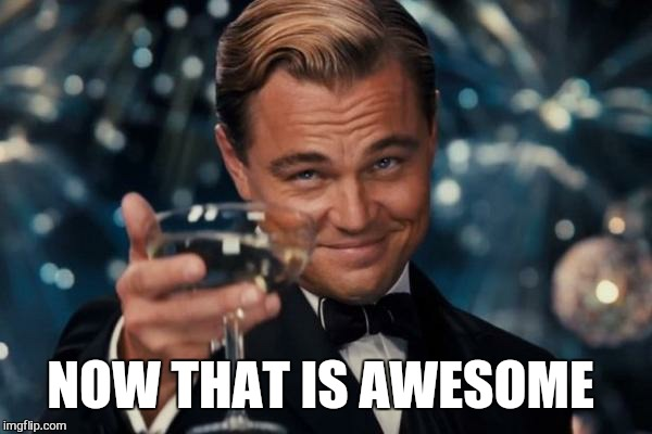 Leonardo Dicaprio Cheers Meme | NOW THAT IS AWESOME | image tagged in memes,leonardo dicaprio cheers | made w/ Imgflip meme maker