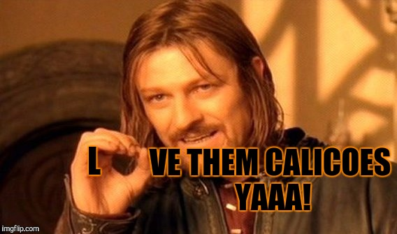 One Does Not Simply Meme | L VE THEM CALICOES YAAA! | image tagged in memes,one does not simply | made w/ Imgflip meme maker