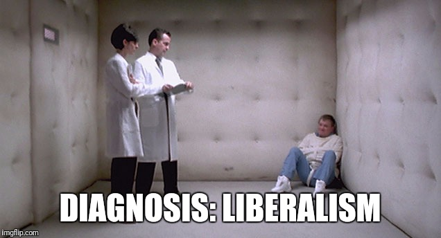 Diagnosis: Liberalism | DIAGNOSIS: LIBERALISM | image tagged in liberals | made w/ Imgflip meme maker
