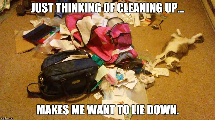 Rocky, champion cat of the universe, cleans house | JUST THINKING OF CLEANING UP... MAKES ME WANT TO LIE DOWN. | image tagged in cats,funny,lazy cat,mess,messy,disorganized | made w/ Imgflip meme maker
