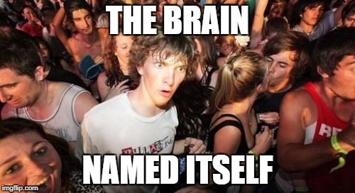 Sudden Clarity Clarence Meme | THE BRAIN NAMED ITSELF | image tagged in memes,sudden clarity clarence | made w/ Imgflip meme maker