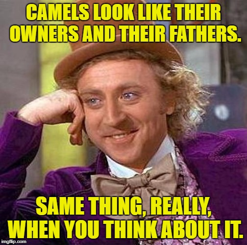Creepy Condescending Wonka Meme | CAMELS LOOK LIKE THEIR OWNERS AND THEIR FATHERS. SAME THING, REALLY, WHEN YOU THINK ABOUT IT. | image tagged in memes,creepy condescending wonka | made w/ Imgflip meme maker