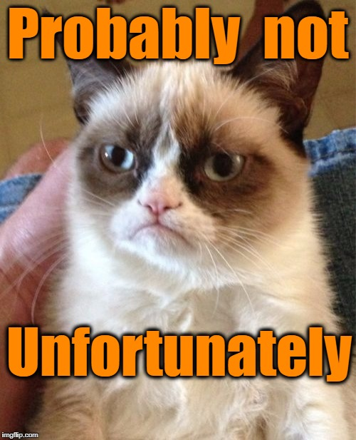 Grumpy Cat Meme | Probably  not Unfortunately | image tagged in memes,grumpy cat | made w/ Imgflip meme maker
