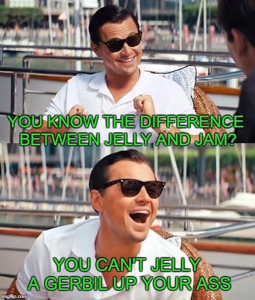 Jelly would help though. | YOU KNOW THE DIFFERENCE BETWEEN JELLY AND JAM? YOU CAN'T JELLY A GERBIL UP YOUR ASS | image tagged in memes,leonardo dicaprio wolf of wall street | made w/ Imgflip meme maker