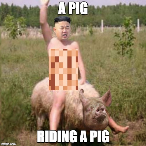 It's Pretty Hard To Tell Them Apart (I Had To Make It SFW) | A PIG RIDING A PIG | image tagged in pig,kim jong un,north korea,bacon | made w/ Imgflip meme maker