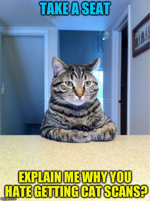 Take A Seat Cat Meme | TAKE A SEAT EXPLAIN ME WHY YOU HATE GETTING CAT SCANS? | image tagged in memes,take a seat cat | made w/ Imgflip meme maker