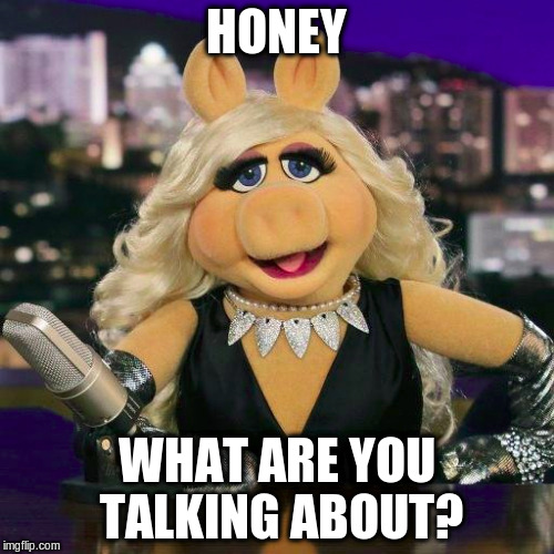HONEY WHAT ARE YOU TALKING ABOUT? | made w/ Imgflip meme maker
