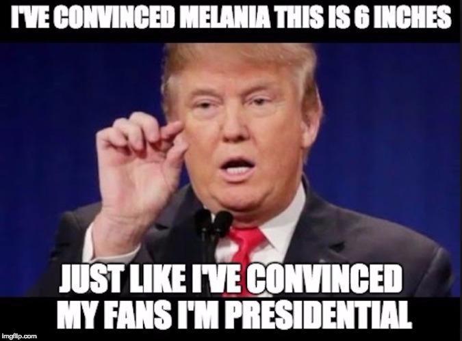 1weqmp dump trump imgflip,Dump Trump Meme