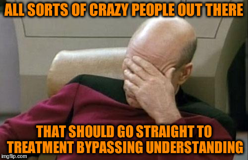 Captain Picard Facepalm Meme | ALL SORTS OF CRAZY PEOPLE OUT THERE THAT SHOULD GO STRAIGHT TO TREATMENT BYPASSING UNDERSTANDING | image tagged in memes,captain picard facepalm | made w/ Imgflip meme maker